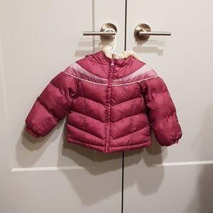 Purple coat (24M)